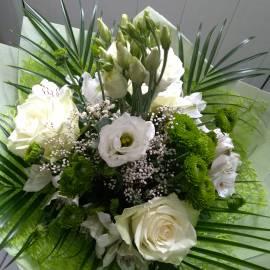 Бяло и зелено