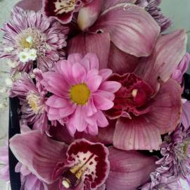 Кутия орхидеи