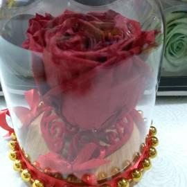 Вечна роза
