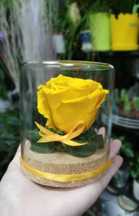 Вечна роза - жълта
